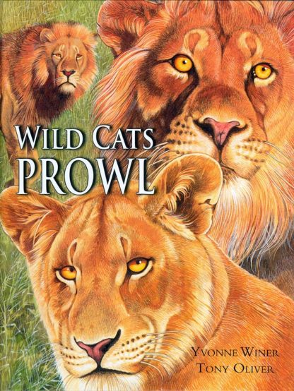 Wild Cats Prowl